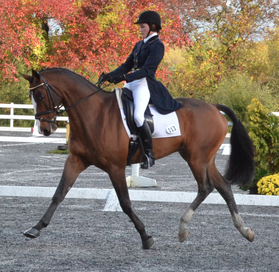 Danica and Utah B at Fair Hill in 2012. Photo by Jenni Autry.