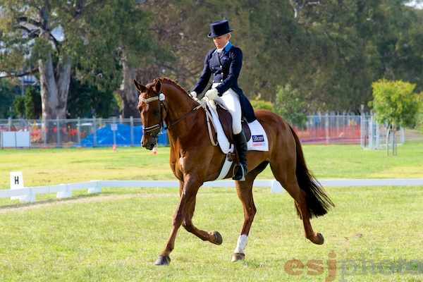 Amanda Ross & Loxley in the CCI2*