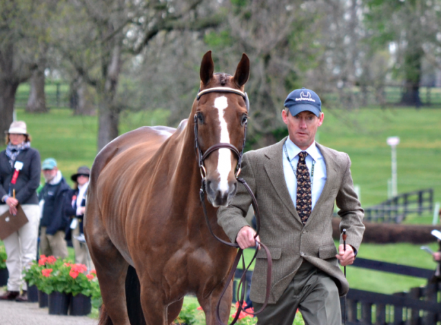 Peter Atkins and Henry Jota Hampton at Rolex 2013. Photo by Jenni Autry.