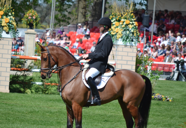 Clark Montgomery and Universe at Badminton in 2012. Photo by Jenni Autry.