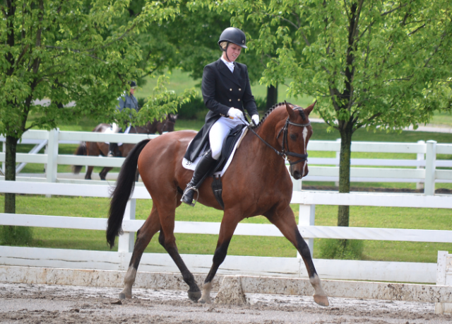 Mackenna Shea and Landioso lead the CCI3* at Jersey Fresh.