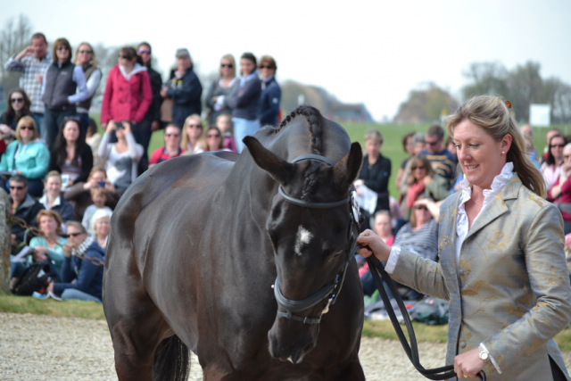 Nicola Wilson and Opposition Buzz at Badminton in 2013. Photo by Jenni Autry.