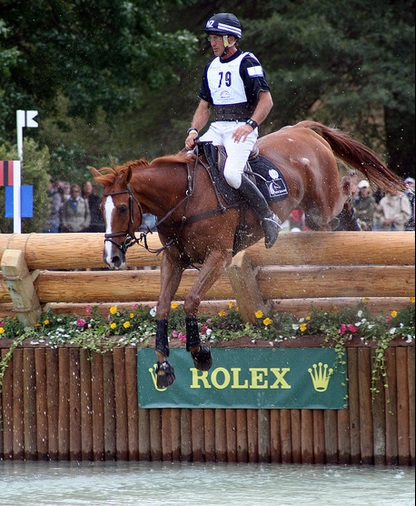 Andrew Nicholson & Nereo at the WEG in Kentucky. Photo by Mandy Collins.