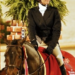 An Eventer S Take On The 2013 Ushja Hunter Derby Finals