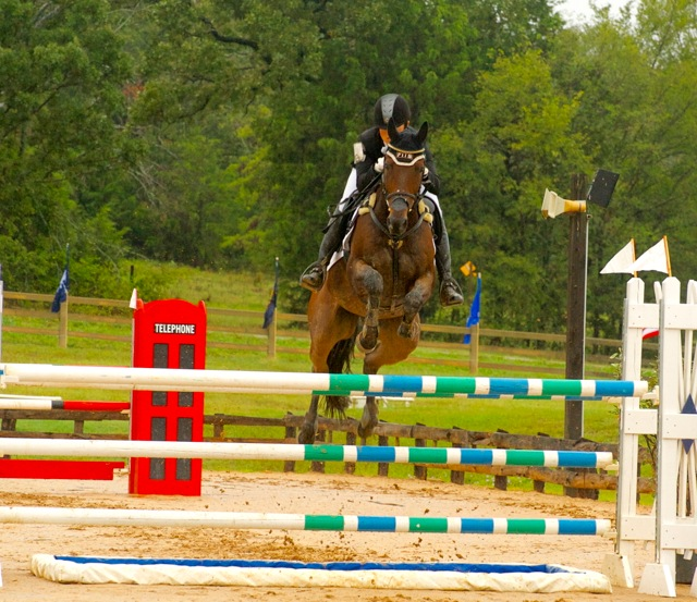 Laine Ashker and Anthony Patch on their way to the 2013 Advanced AEC win. Photo courtesy of Liz Hall.