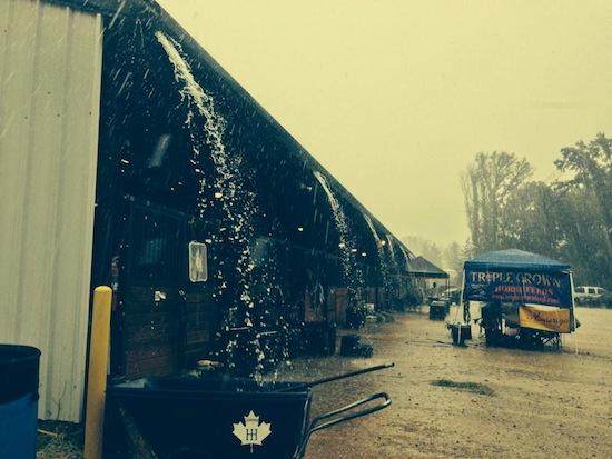Rain at the AEC's. Photo from Liz Hall
