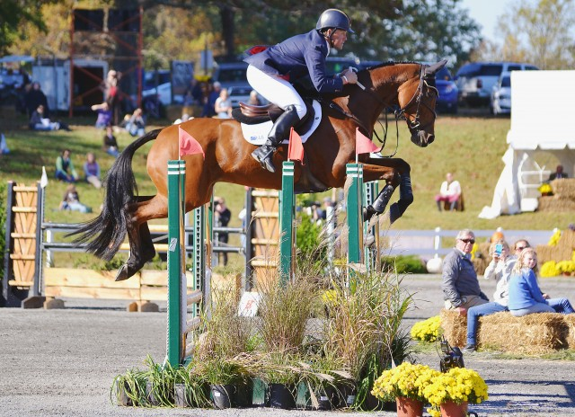 Buck Davidson and Park Trader at Fair Hill. Photo by Jenni Autry.