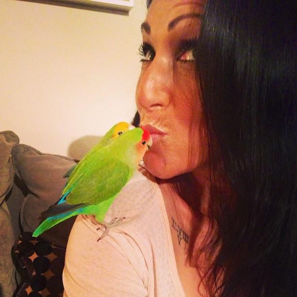 Lainey and Love Birds, Barney and Elmo