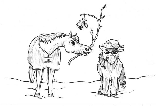 Illustration by Lindsey Kahn