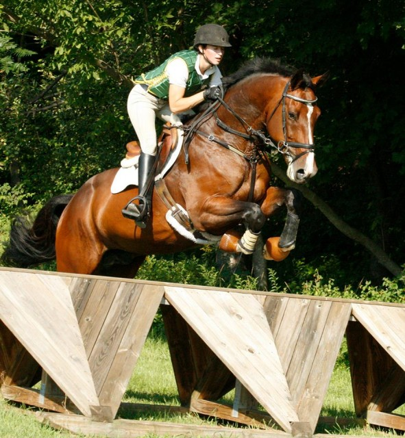 Skybreaker xc schooling this summer (photo taken by May Emerson)