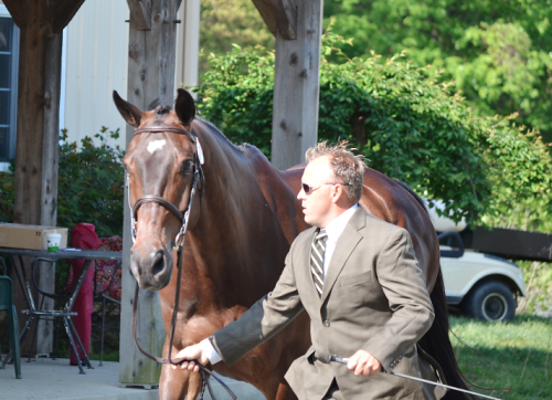 Buck Davidson and D.A. Adirmo. Photo by Jenni Autry.