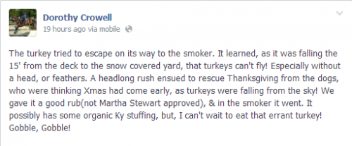 Dorothy Crowell's Thanksgiving adventures.