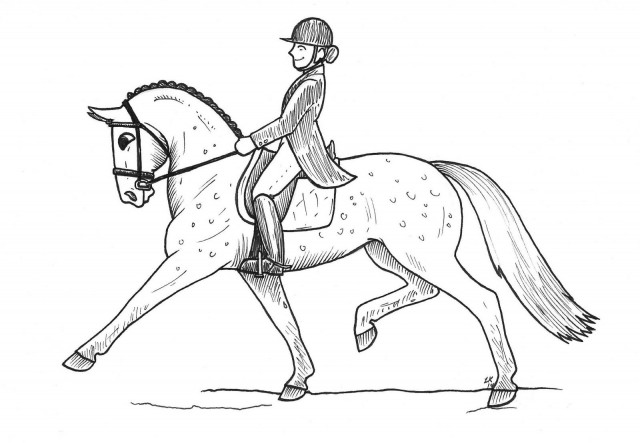 Wouldn't it be great if riding to music could help me achieve a trot that looks like this?  Illustration by Lindsey Kahn