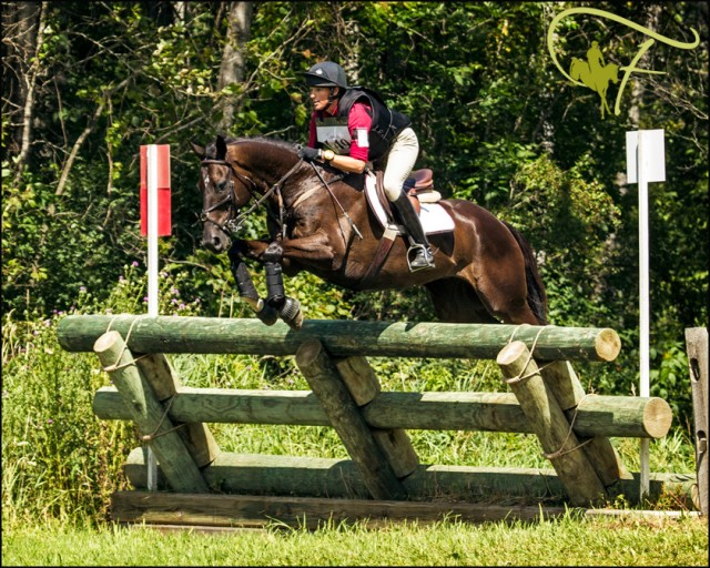 Andrea Waldo and  Serendipity Traveller in the Open intermediate at GMHA last year. Used with permission from Flatlandsfoto.