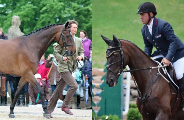 Left: William Fox-Pitt and Lionheart. Photo by Samantha Clark. Right: Buck Davidson and Simon's Keeper. Photo by Jenni Autry.