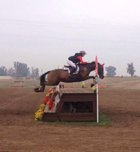 Eventing 25 Rider Cori Davis and A Golden Effort at Fresno County Horse Park. Photo from Dragonfire Farm's Facebook Page