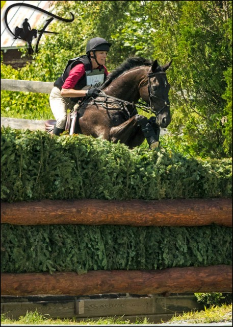 Andrea Waldo and Serendipity Traveler soaring over the massive intermediate ditch and brush at the GMHA Festival of Eventing last summer. Andrea was a bit worried about this fence, but they rose to the occasion! Photo credit to Elizabeth Parenteau/ Flatlandsfoto.