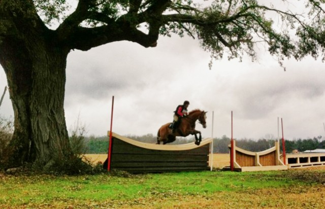 Tiffani Loudon-Meetze and Hap clearing the second-to-last jump at the February 26 Full Gallop H.T. (Aiken, SC). Photo by Wylie.