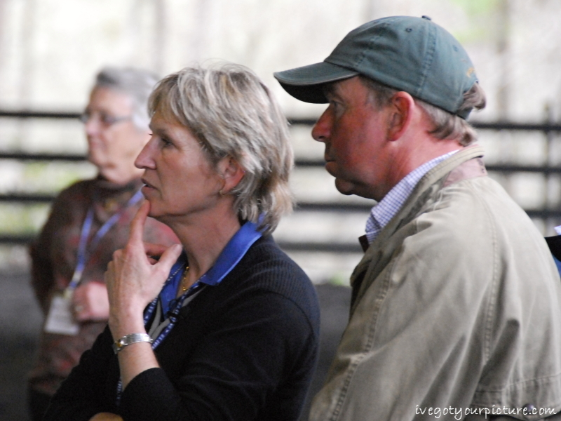 Susan Graham-White and Robin Walker evaluate a yearling.  Photo by Ivegotyourpicture.com.