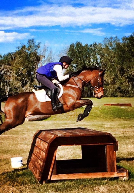 Julie and Buenos Aires cross country schooling with David O'Connor. Photo from the USEF Eventing High Performance Facebook page.
