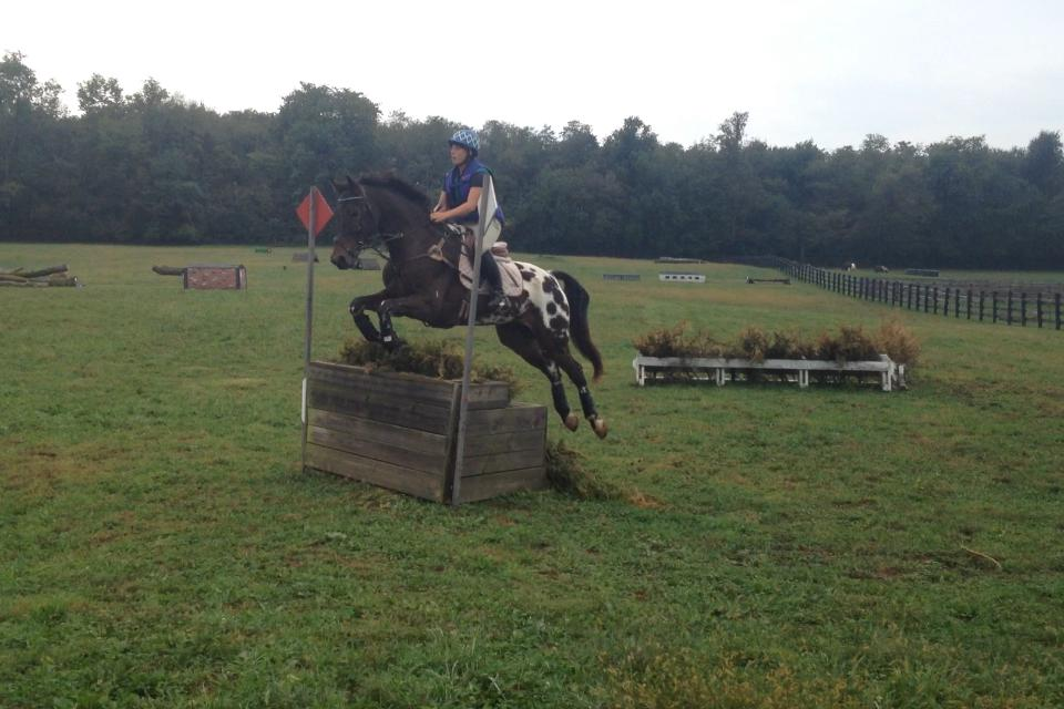 Andrea and Wapentake cross country schooling. Photo by Megan Moore.