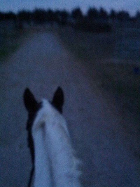 A sight familiar to the adult amateur: the twilight hack.