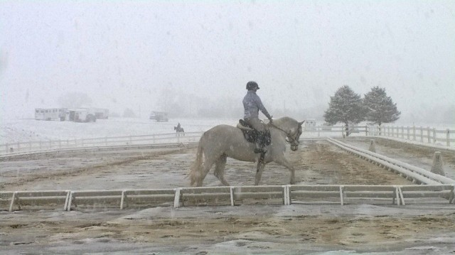 White-out snow conditions at Virginia Horse Trials this morning. Photo via Emily Daily.