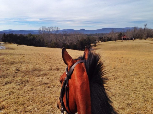 The last ride I got before the snow came down in VA....hope you like snow days prior to your 3* Nyls!