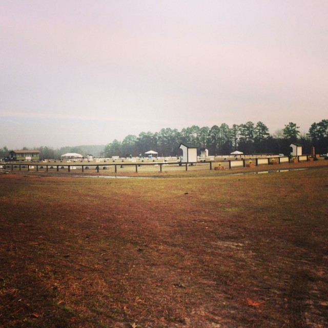 Our very first Instagram photo from Carolina Horse Park. Photo by Sally Spickard.