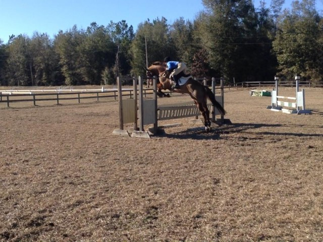 Deb's horse was quite excited to be jumping outside!