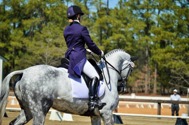 Emily Beshear and Shame On the Moon in the CIC2* dressage. Photo by Sally Spickard.