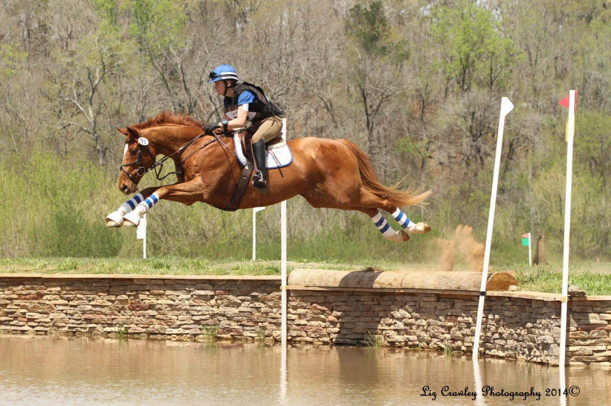 Horses jumping cross country - photo#36