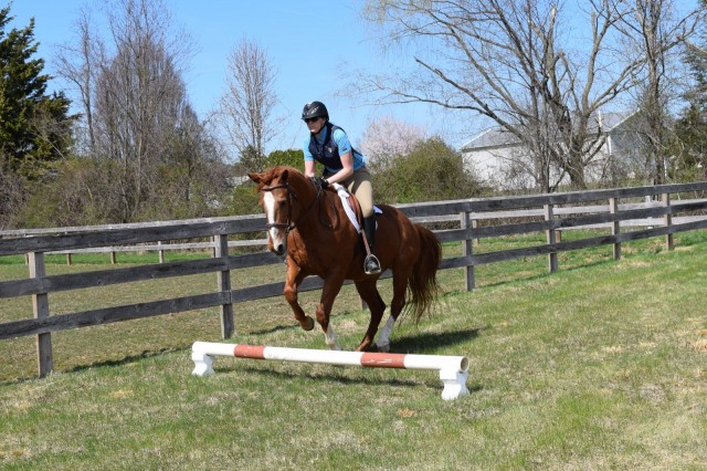 Schooling with Ripley while sporting the Eventer Pro vest