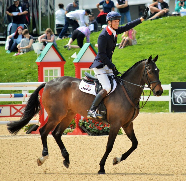 William Fox Pitt and Bay My Hero. Photo by Sally Spickard.
