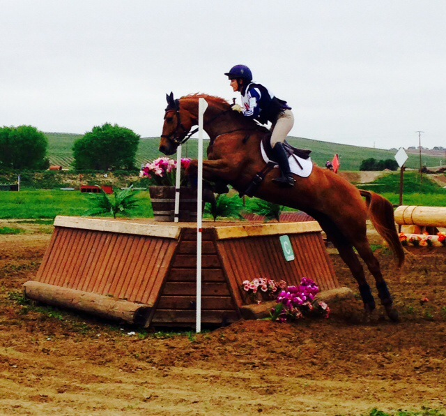 Lauren Billys and Jitterbug in the CCI* at Twin Rivers. Photo by Emilee Libby.