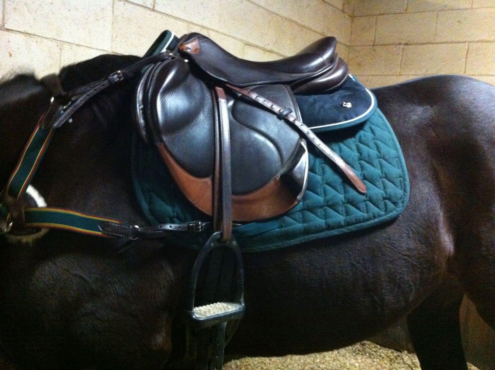 2aaed27e3093 Brand Spotlight  Ogilvy Equestrian