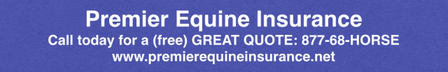 Premier Great Quote Banner