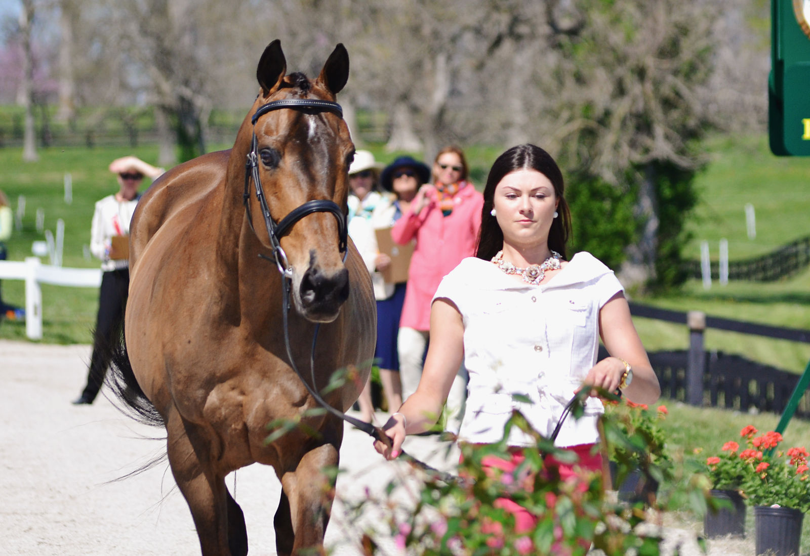 Rachel McDonough and Irish Rhythm. Photo by Jenni Autry.