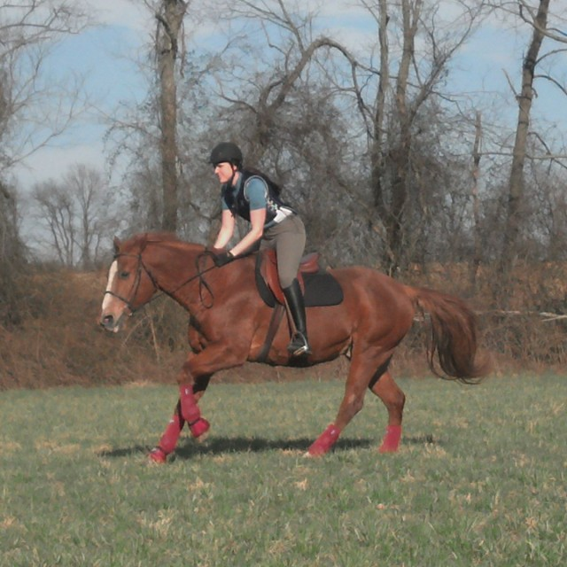 Throughout our entire schooling session, the Success Non-Slip Pad just didn't slip. Not even once.