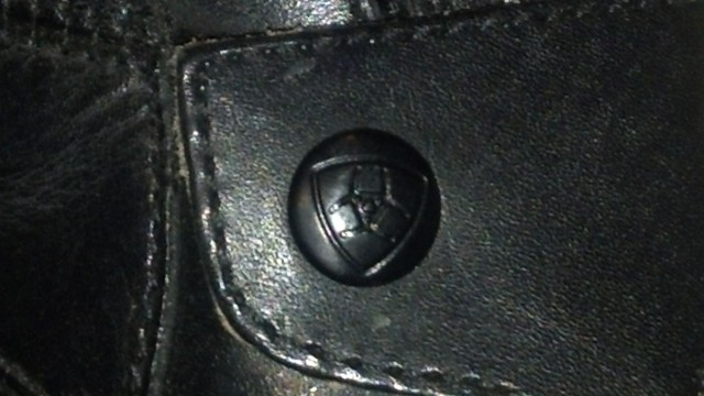 Details, details--the Ariat logo displayed on one of the back zipper guards on the Volant boot