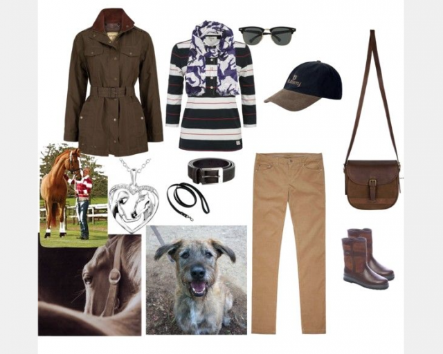 Sophiaacamaya94's entry in the Dubarry Pin It to Win It contest.