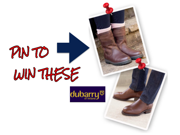 dubarry pin promo
