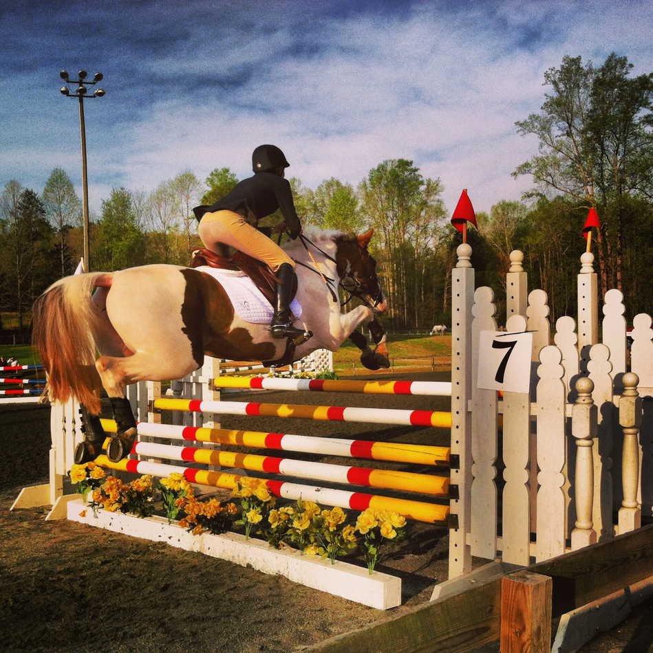 Caroline Andrews and Will You Be Mine, winners of Open Prelim A.