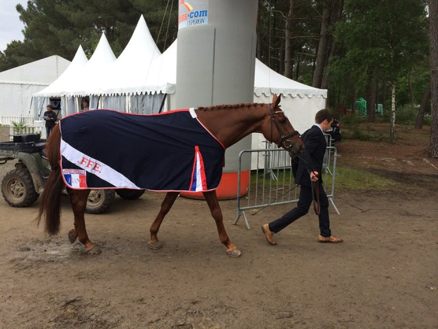 Luc Chateau's mount Propriano de l'Ebat was spun from the final horse inspection. Photo via Saumur's Facebook page.