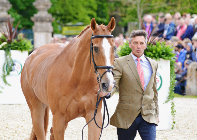 Andrew Nicholson and Nereo at Badminton 2014. Photo by Jenni Autry.