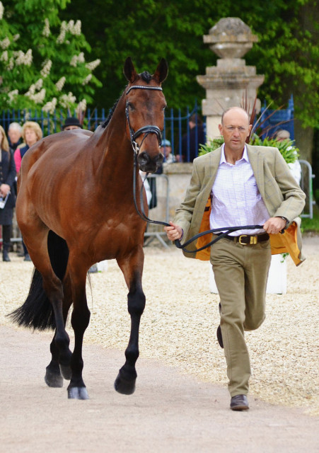 Bill Levett and Shannondale Titan at Badminton. Photo by Jenni Autry.