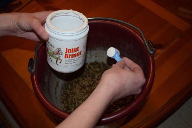 Measuring out the Joint Armor maintenance dose (one scoop) for Ripley's grain