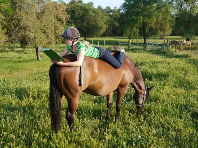 Photo courtesy of Horse Nation.