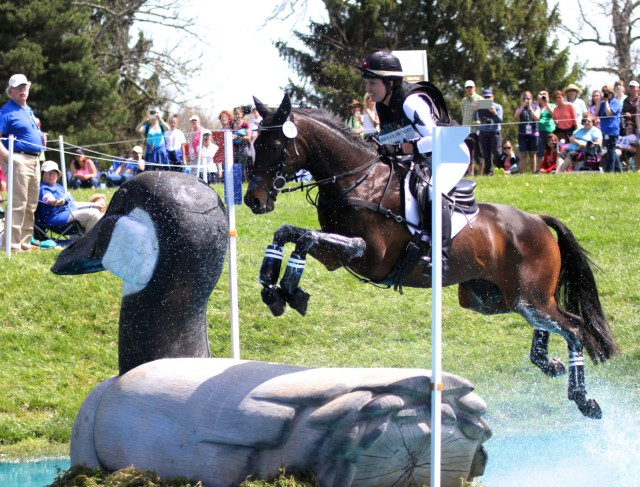 Libby Head and Sir Rockstar take the Goose at Rolex. Photo by Kasey Mueller.