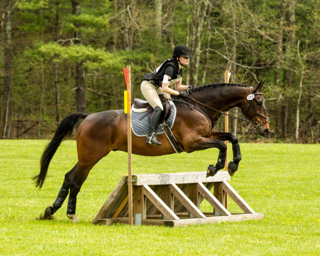 Winners of the Beginner Novice Rider Division B were Hannah OBrien and Paddington (Flatlandsfoto)
